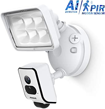 Annke Floodlight Security Camera (l41MV) Review